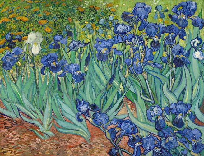Van Gogh, Irises, May 1889. Oil on canvas